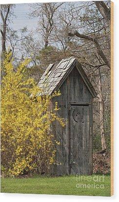 Outdoor Plumbing Wood Print by Nicki McManus