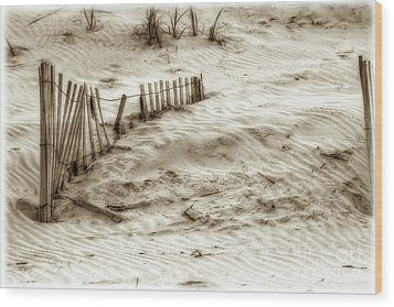 Outer Banks Beach Sand Fence  Wood Print by Randy Steele