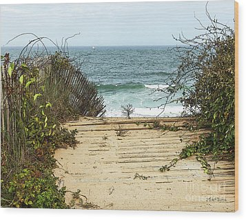 Wood Print featuring the photograph Outermost Passage by Michelle Wiarda