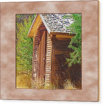 Wood Print featuring the photograph Outhouse 1 by Susan Kinney