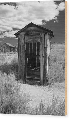 Outhouse In Ghost Town Wood Print by George Oze