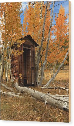 Outhouse In The Aspens Wood Print