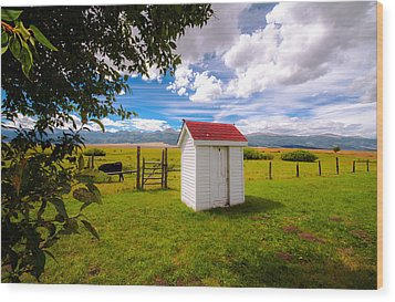 Outhouse Wood Print by Tim Reaves