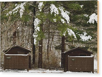 Outhouses In The Cold Wood Print