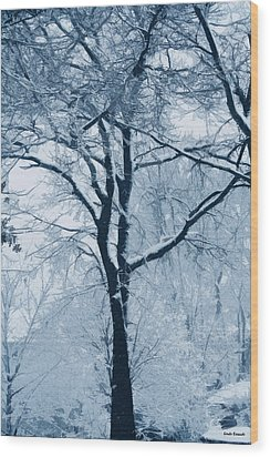 Outside My Window Wood Print by Linda Sannuti