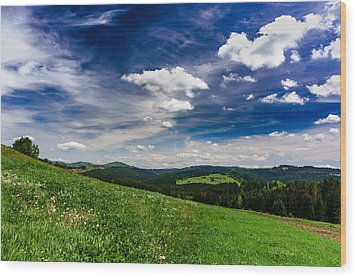 Wood Print featuring the photograph Over The Green Hills by Dmytro Korol