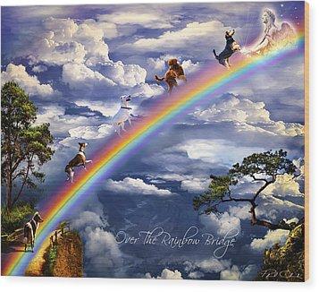 Over The Rainbow Bridge Wood Print