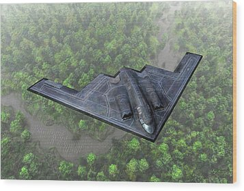 Over The River And Through The Woods In A Stealth Bomber Wood Print