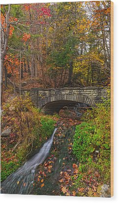 Over The Stream Wood Print by Mark Papke