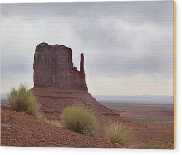 Overcast Valley Wood Print by Gordon Beck