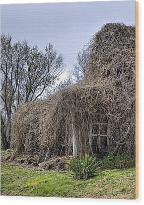 Wood Print featuring the photograph Overgrown by Alan Raasch