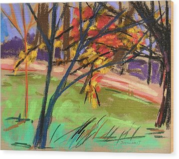 Overhangs The Path Wood Print by John Williams