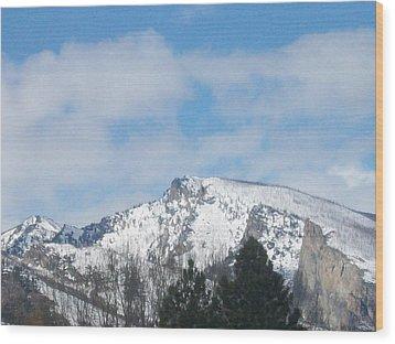 Wood Print featuring the photograph Overlooking Blodgett by Jewel Hengen