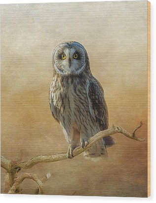 Wood Print featuring the photograph Owl  by Angie Vogel
