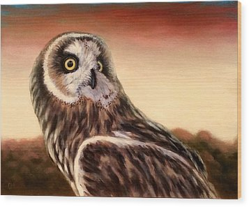 Owl At Sunset Wood Print