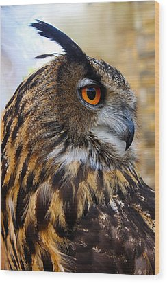 Owl-cry Wood Print