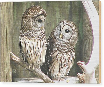 Owl Love You Forever Wood Print