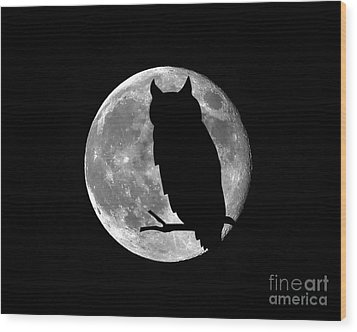Owl Moon Wood Print by Al Powell Photography USA