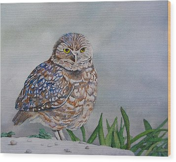 Owl Wood Print by Sharon Farber
