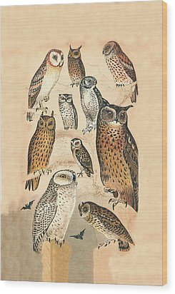 Owls Wood Print by Eric Kempson