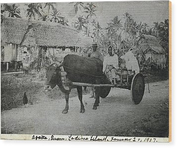 Ox Cart Guam 1907 Wood Print by eGuam Photo