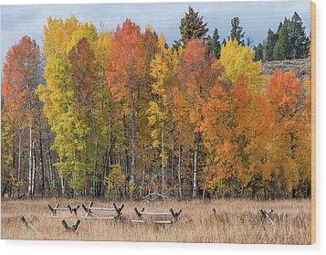 Oxbow Fall Colors Wood Print