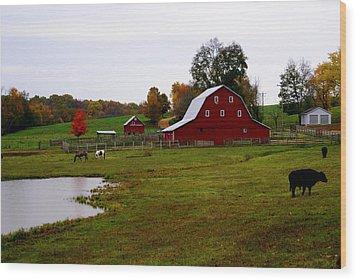 Ozark Farm Wood Print by Marty Koch