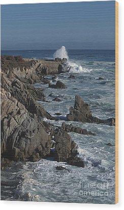 Wood Print featuring the photograph Pacific Grove Seascape by Stan and Anne Foster