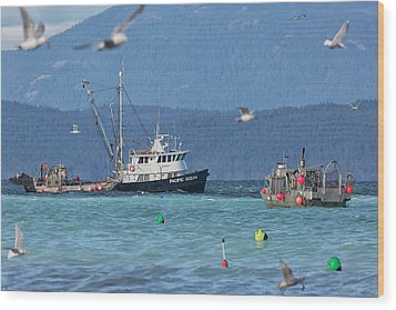 Wood Print featuring the photograph Pacific Ocean Herring by Randy Hall