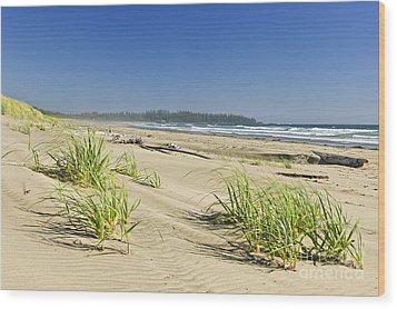 Pacific Ocean Shore On Vancouver Island Wood Print by Elena Elisseeva