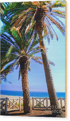 Pacific Palisades Park Wood Print by Kelly Wade
