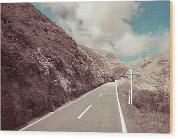 Wood Print featuring the photograph Paekakariki Hill Road by Joseph Westrupp
