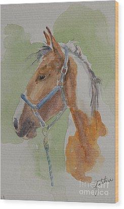 Paint I Wood Print by Gretchen Bjornson