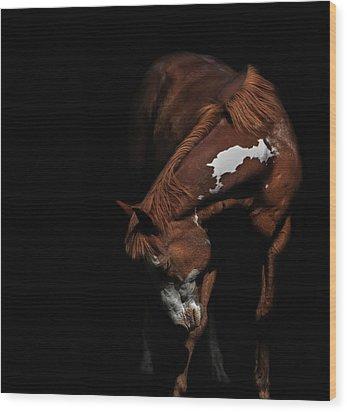 Paint In Black II Wood Print