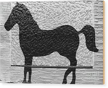 Wood Print featuring the photograph Painted Black - Stone Pony by Colleen Kammerer