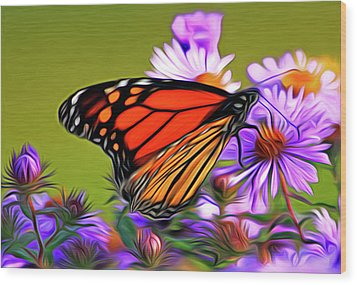 Painted Butterfly Wood Print by David Kehrli