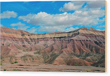 Painted Desert Wood Print by Charlotte Schafer