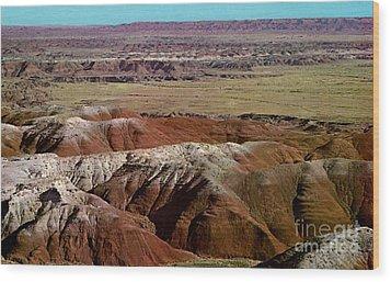 Painted Desert In Arizona Wood Print by Ruth  Housley