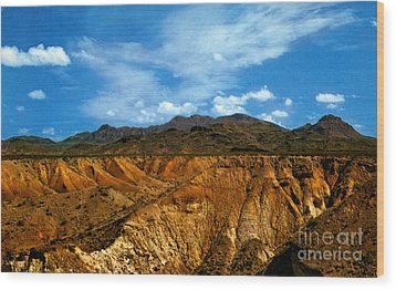 Painted Desert Wood Print by Ruth  Housley