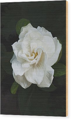 Wood Print featuring the photograph Painted Gardenia by Phyllis Denton