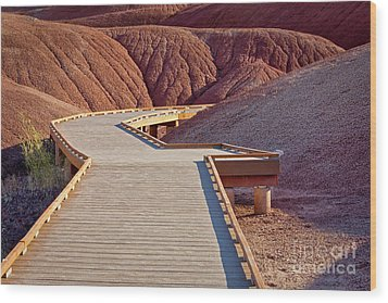 Painted Hills Boardwalk Wood Print by Jerry Fornarotto