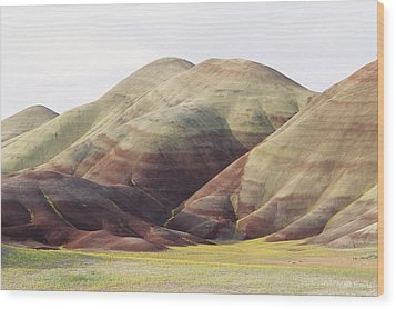 Painted Hills Wood Print by Greg Vaughn - Printscapes