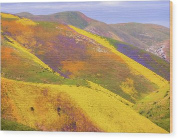 Wood Print featuring the photograph Painted Hills by Marc Crumpler