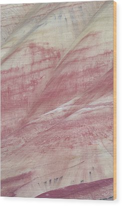 Wood Print featuring the photograph Painted Hills Textures 1 by Leland D Howard