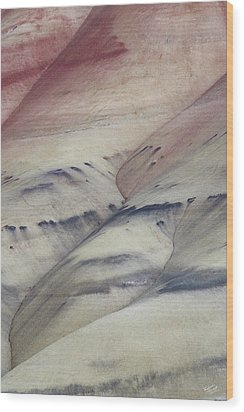Wood Print featuring the photograph Painted Hills Textures 2 by Leland D Howard