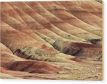 Painted Hills Textures Wood Print by Jerry Fornarotto