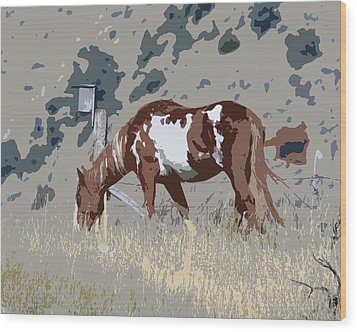 Wood Print featuring the photograph Painted Horse by Steve McKinzie