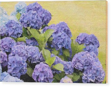 Painted Hydrangeas Wood Print by Gina Cormier