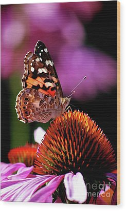 Wood Print featuring the photograph Painted Lady by Lila Fisher-Wenzel