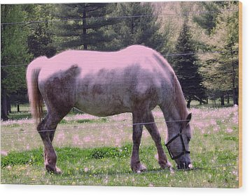 Wood Print featuring the photograph Painted Pony by Susan Carella